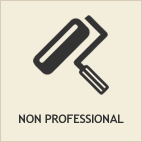 non professional services